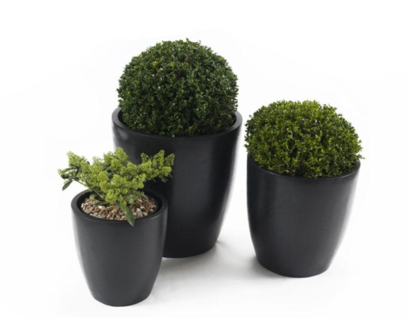 Black Ceramic Planters 1