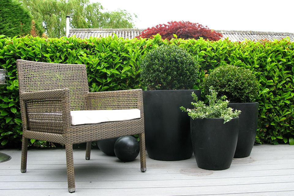 Black Ceramic Planters 3