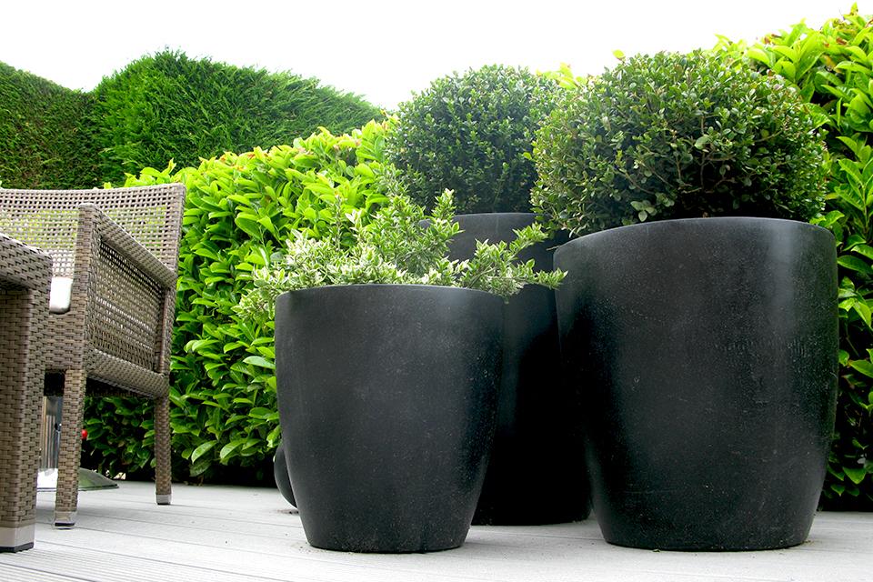 Black Ceramic Planters