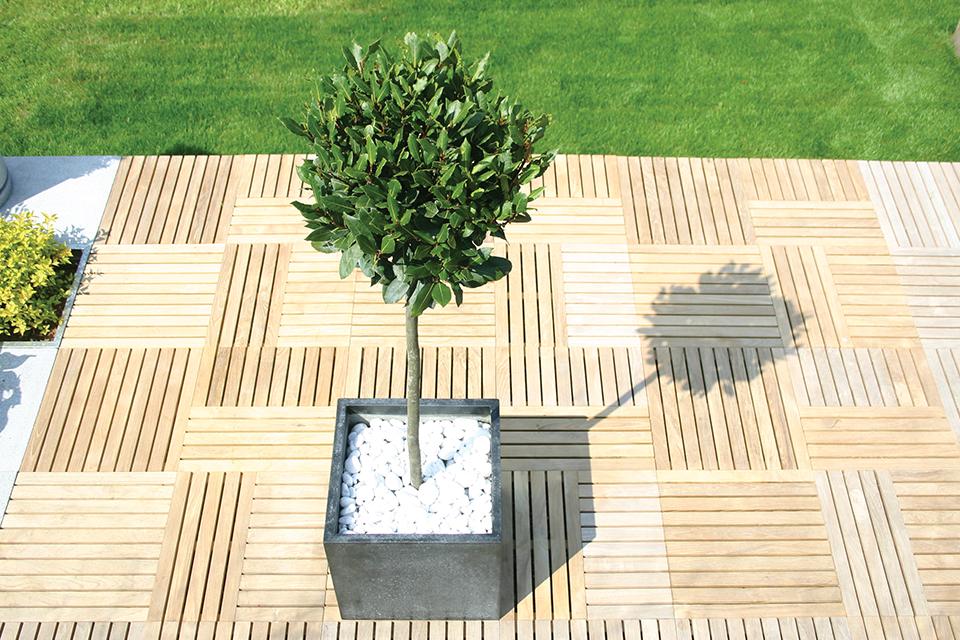 Contemporary Cube Planters 1
